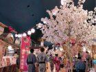 大江戸温泉物語のなかにある桜