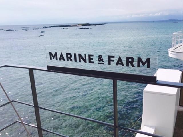 """夏は""""葉山""""へドライブしよう!実際に行ってよかった葉山のレストラン『MARINE & FARM』とカフェ『MARLOWE』を紹介します☆"""