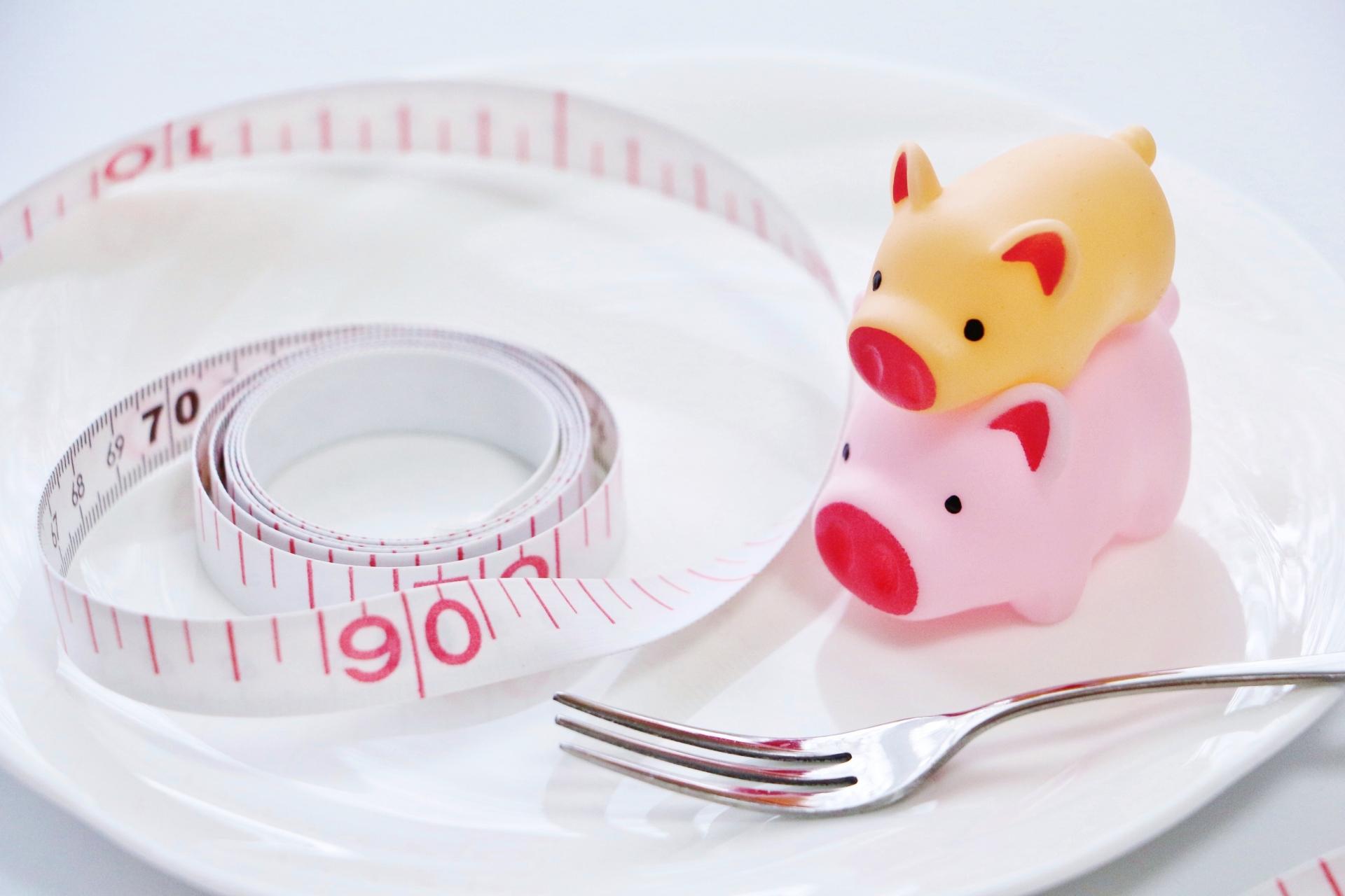 私のファスティングダイエットの失敗談。失敗した時の原因をご紹介します!