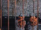 牢屋のなかで話しこむ囚人の女の子2人